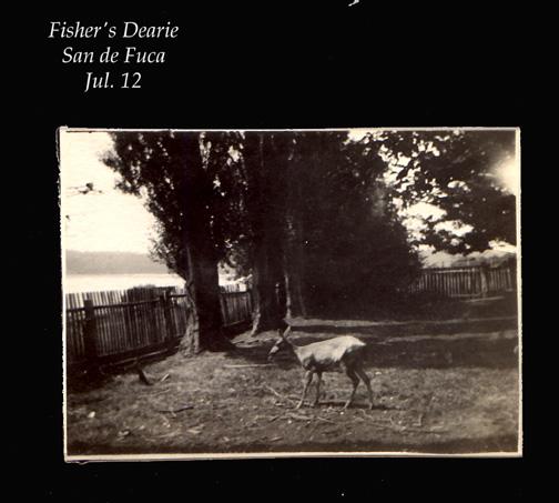 Fisher's Dearie