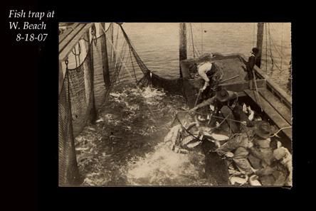 Fish trap